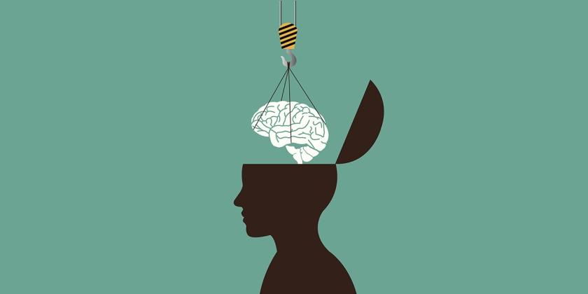 Human head concept