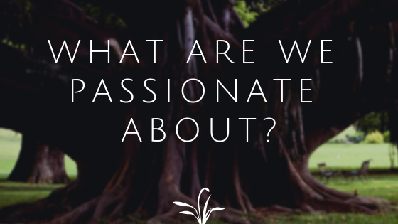 What Are We Passionate About?