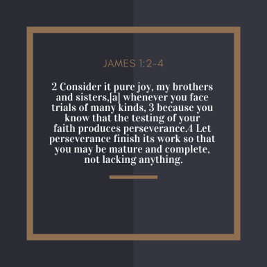 2 Consider it pure joy, my brothers and sisters,[a] whenever you face trials of many kinds, 3 because you know that the testing of your faith produces perseverance.4 Let perseverance finish its work so that you may b (1)